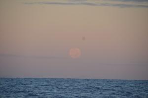 This morning's full moon setting. It lit the sky last night.