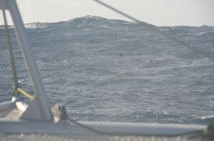 what 35 knots steady does to the sea over time. (about 12 feet high)